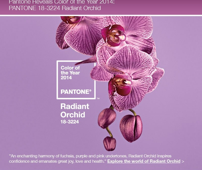 Radiant Orchid becomes Pantone Color of the Year