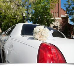 Fall In Love With Wedding Transportation